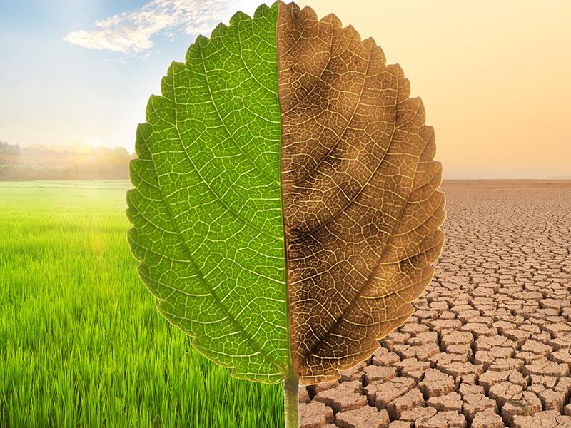 ESG Environmental Main Web F